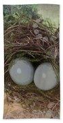 Eggs In A Nest Beach Towel
