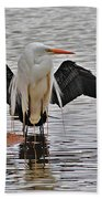 Egret And Cormorant Wings Beach Towel