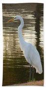 Egret At Waters Edge Beach Towel
