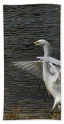 Egret Dance Beach Towel