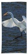 Egret Fishing Beach Towel