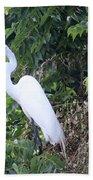 Egret In A Tree Beach Towel