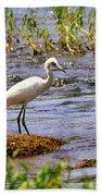 Egret On A Rock Beach Towel