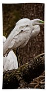 Egrets On A Branch Beach Towel