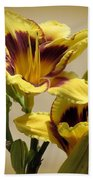 El Bandito Daylilies - Yellow  Beach Towel