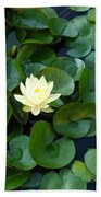 Elegant Water Lily Beach Towel