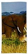 Elephant And The Lions Beach Towel