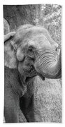 Elephant And Tree Trunk Black And White Beach Towel