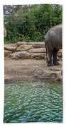 Elephant And Waterfall Beach Towel