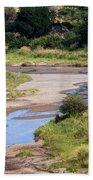 Elephant Crossing In Tarangire Beach Towel