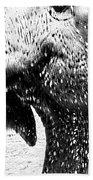Elephant Gossip Beach Towel
