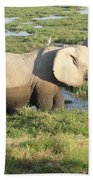 Elephant Mother And Calves Beach Towel