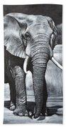Elephant Night Walker Beach Towel