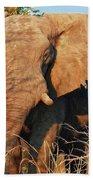 Elephant On Approach Beach Towel