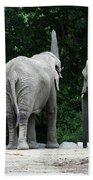 Elephant Trio Beach Towel