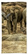 Elephants Social Beach Towel