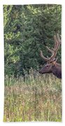 Elk In The Forest Beach Towel