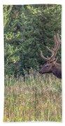 Elk In The Forest Beach Sheet