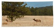 Elk In The Fossil Beds Beach Towel