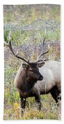 Elk In Wildflowers #1 Beach Towel