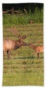 Elk Kisses Beach Towel by Jemmy Archer