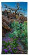 Elk Mountain Flowers Beach Towel
