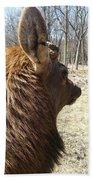 Elk Profile Beach Towel