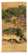 Elk Under Tree Beach Towel