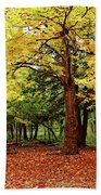 Elora Gorge Campsite In Fall Beach Towel