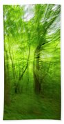 Enchanted Forest 1 Beach Towel
