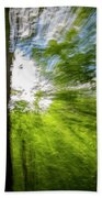 Enchanted Forest 5 Beach Towel