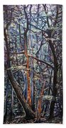 Enchanted Woods Beach Towel