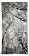 Entwined In The Sky Beach Towel