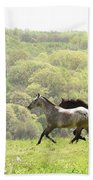Equines For Freedom Beach Towel
