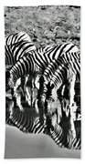 Etosha Pan Reflections Beach Towel