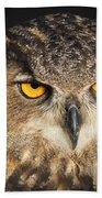 Eurasian Eagle Owl Portrait Beach Towel