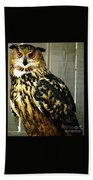 Eurasian Eagle-owl With Oil Painting Effect Beach Towel