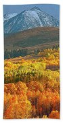 Evening Aspen Beach Towel