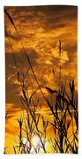 Evening Grass Beach Towel