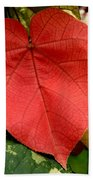 Evening Hau Tree Leaves Beach Towel