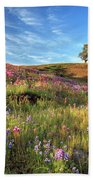 Evening Light At North Table Mountain Beach Towel