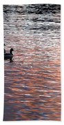 Evening Swim Beach Towel