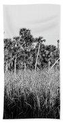 Everglades Grasses And Palm Trees 2 Beach Towel