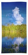 Everglades Smoke Beach Towel