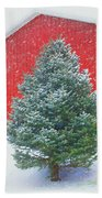 Evergreen In Winter #1 Beach Towel