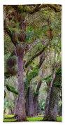 Evergreen Beach Towel