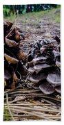 Evergreen Pinecones Beach Towel