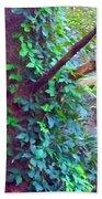 Evergreen Tree With Green Vine Beach Towel