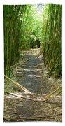 Exlporing Maui's Bamboo Beach Towel
