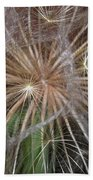 Experience The Dandelion Beach Towel